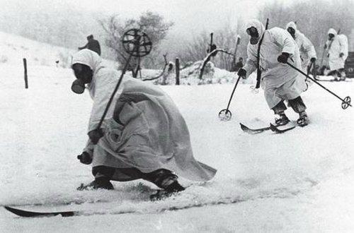 Лыжные подразделения